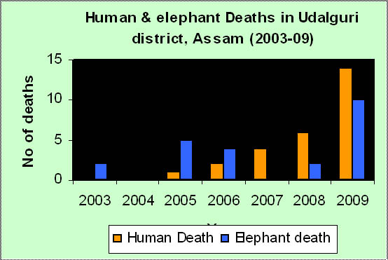 Man elephant conflict in assam pdf free