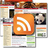 Web feeds are an easy way for you to keep updated automatically on websites you like  	© WWF