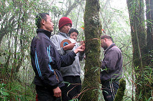 WWF-India and EDC members sampling red panda habitat in Barsey Rhododenderon WLS, West District, Sikkim
